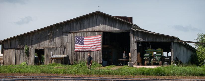 eliminating farm subsidies reduce obesity