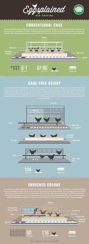 chicken_housing_infographic_v2_cs5