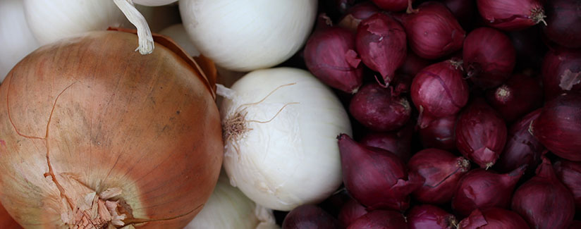 Is It Ok To Use Leftover Onions Bestfoodfacts Org