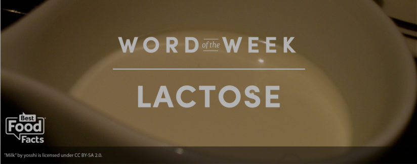 Word of the Week Lactose