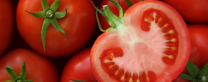 Best-Food-Facts-Tomatoes-in-the-Refrigerator