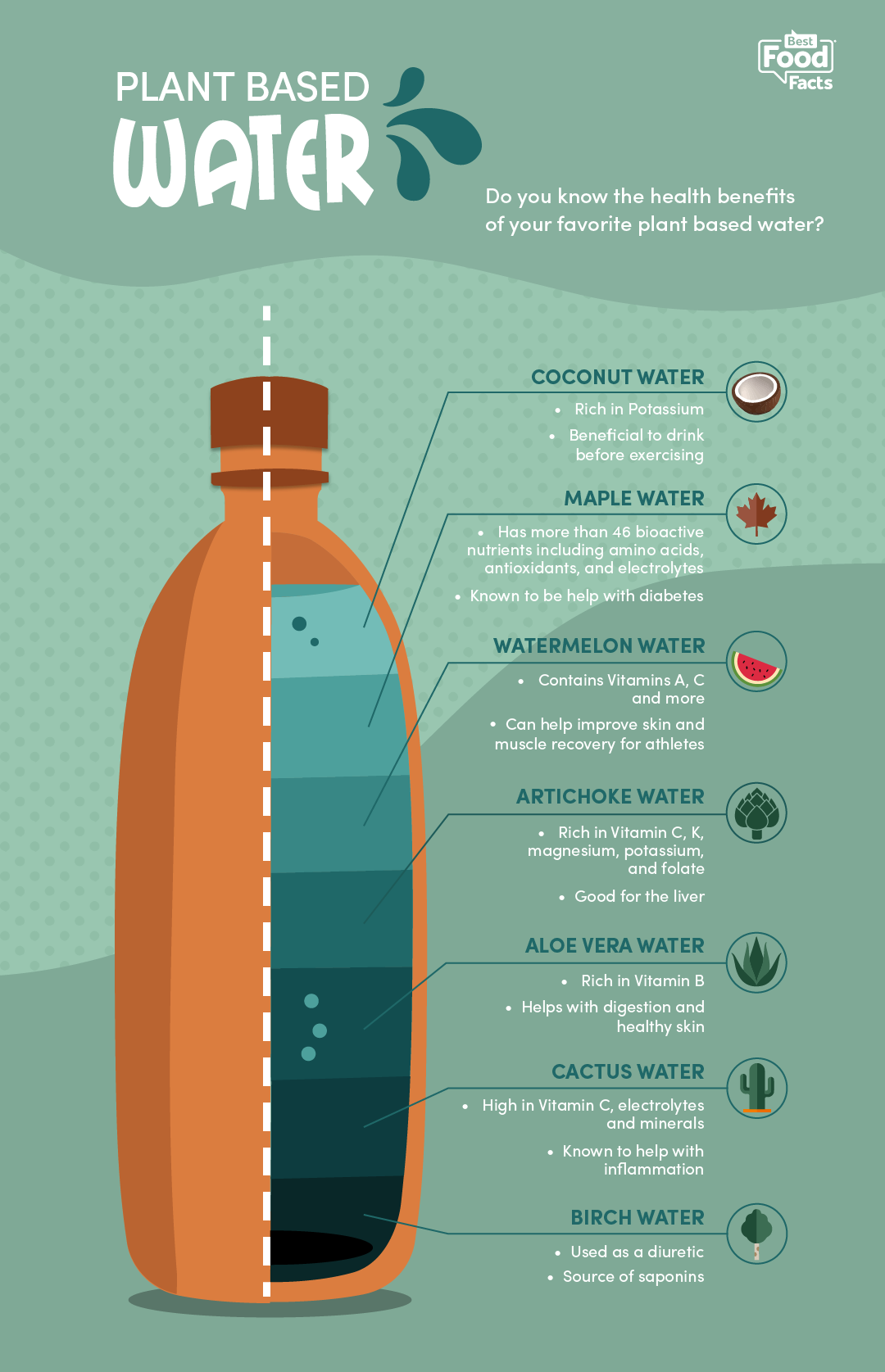 plant waters offer cool alternative | bestfoodfacts