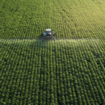 Sustainability: What If Farmers Did Not Use Pesticides?