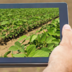 How Do Farmers Use Technologies to Produce More With Less?